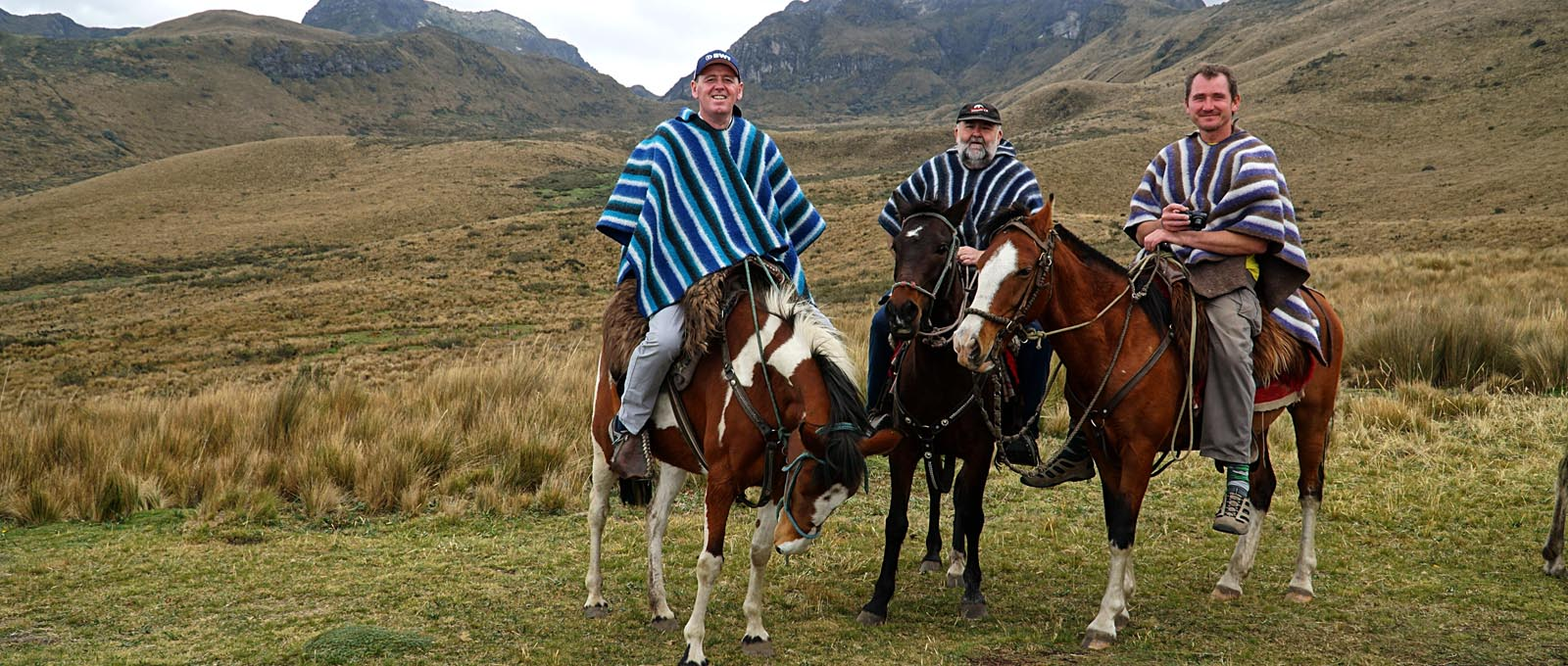 To Ried oppem Husboajch von Quito. Em Hinjagrunt dee Vulkan Oola Pchincha (4690 m). © Andreas Harms